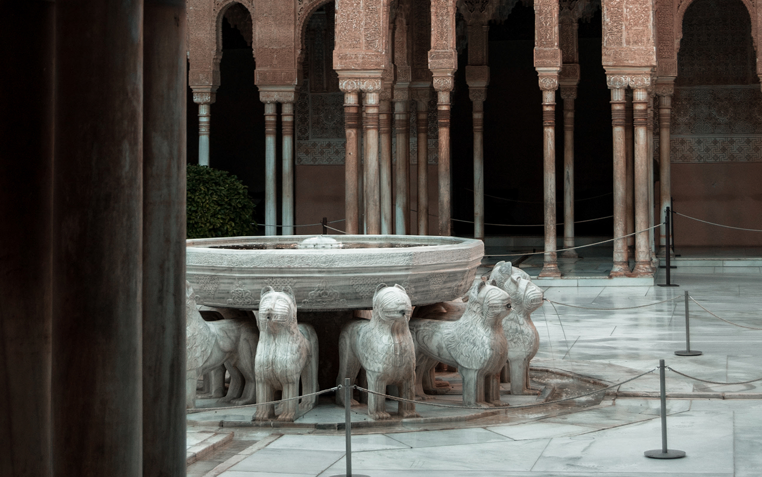Tours of the Alhambra of Granada