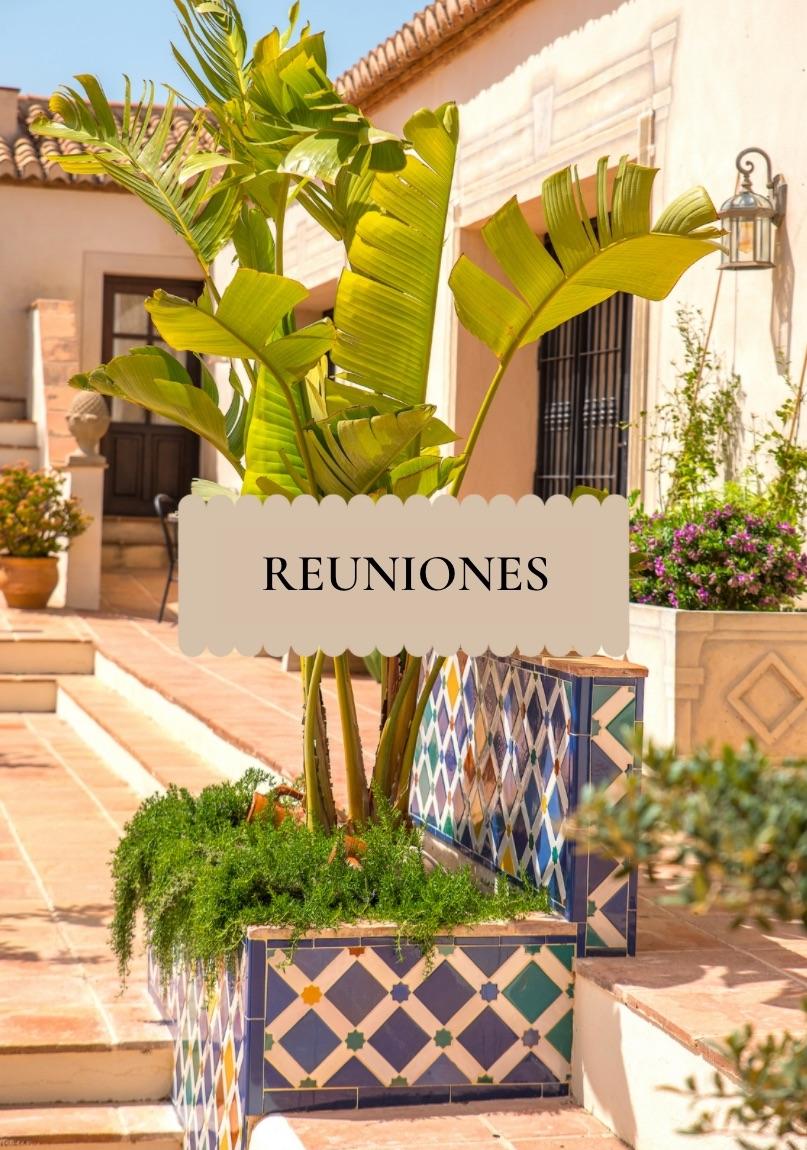 Reuniones en La Esperanza Granada